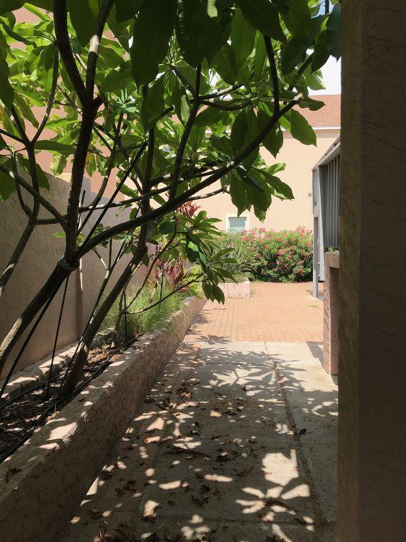 Path to tropical garden